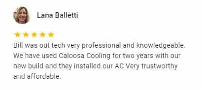 Google Review by Lana Balletti