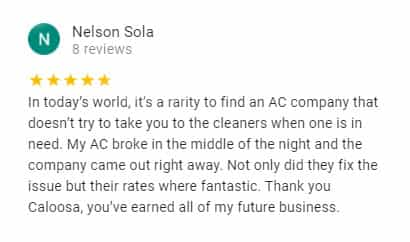 Google Review by Nelson Sola